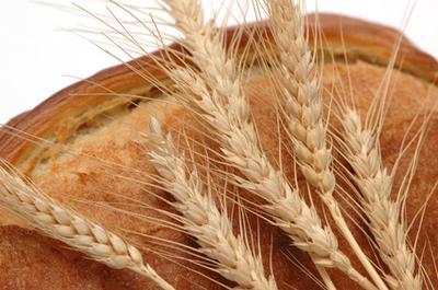 Хляб и житни кълнове - едни от полезни храни за отслабване