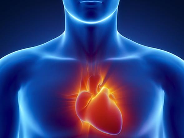 Храни полезни за сърцето