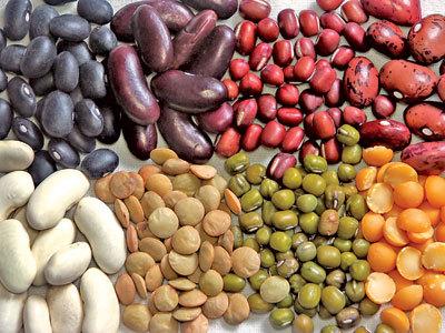 Бобът е една от храните с най-много протеини