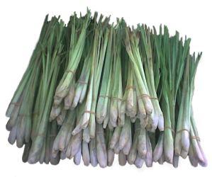 Свойствата на тази билка и подправка са най-различни и едно то тях помага за намаляване на килограмите.