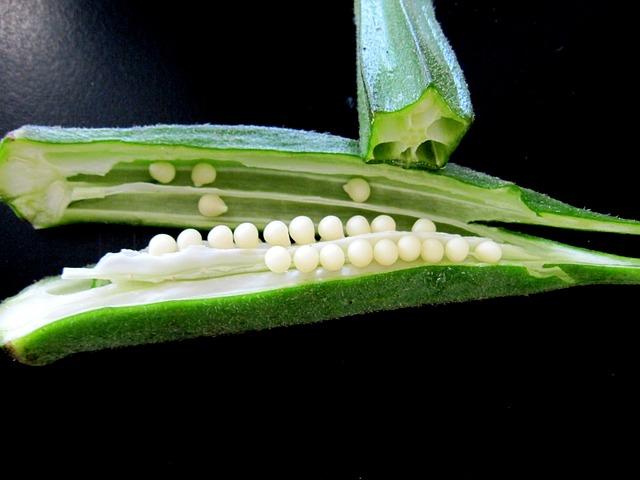 Бамята е подходящ зеленчук за диети за отслабване