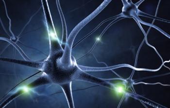 За правилното функциониране на нервите ви е важно да приемате определи храни